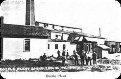 Elk Flint Bottle Plant